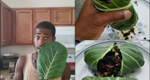 Raw Vegan Food Recipe |Black Rice Burrito Wrap