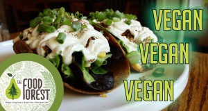 The Food Forest – VEGAN Restaurant Review