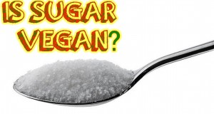 Vegan FAQ – Is Sugar Vegan?