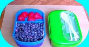 Vegan Lunch Ideas ★ Bento Box Recipes