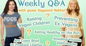 Worry Free Healthy Meal Plans – And Why Vegans Have The Answer – Part One
